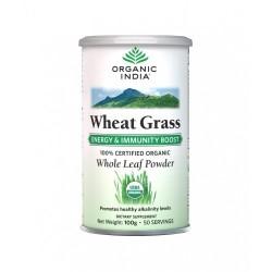 Wheat Grass 100 g - Organic India